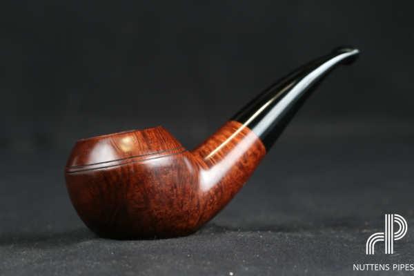 bent rhodesian smooth