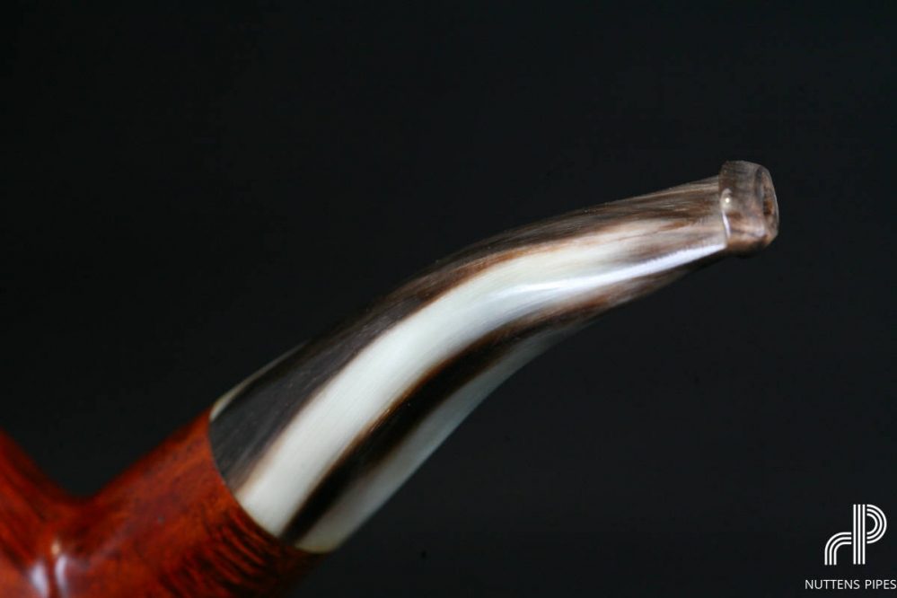 author smooth horn stem