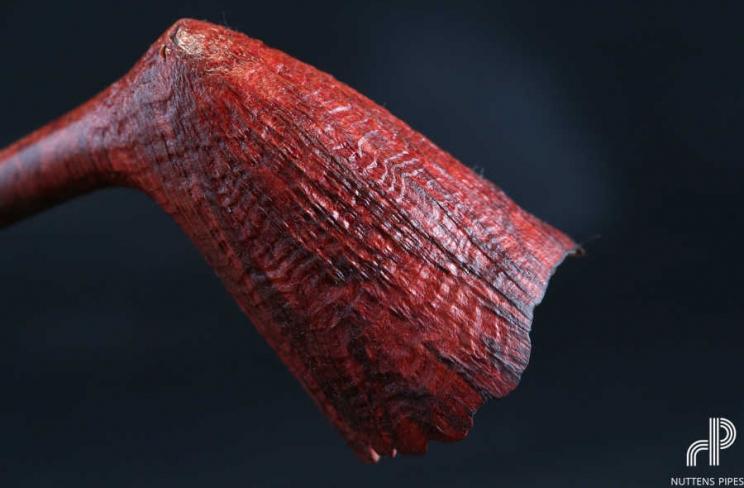 twiggy reddish contrast