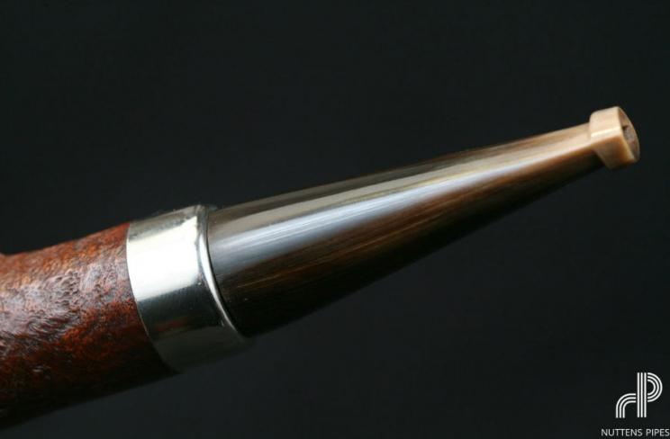 rhodesian panelled horn #1