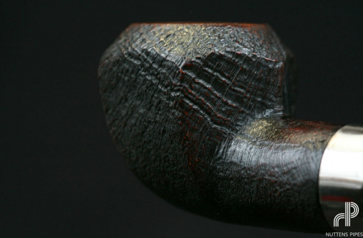 rhosedian panel brule-gueule corne #1