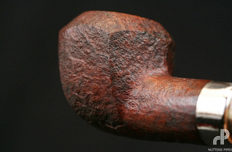 rhosedian panel brule-gueule corne #3