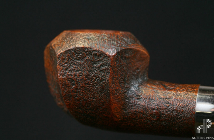 rhosedian panel brule-gueule corne #4