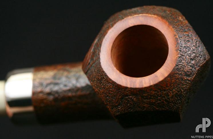 rhodesian panelled nosewarmer horn #4