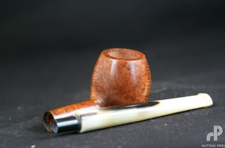 apple smooth horn