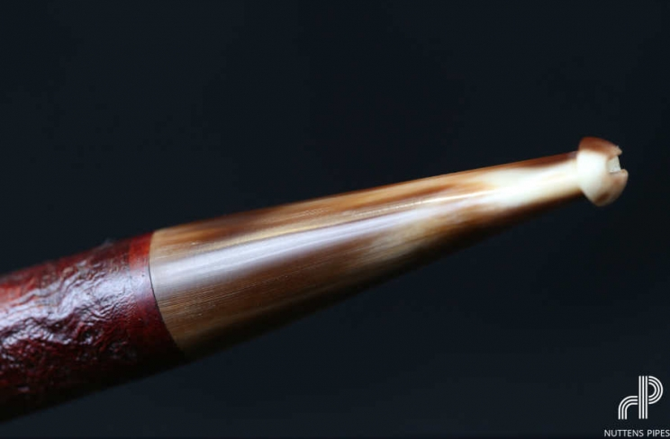 Chubby billiard corne #3