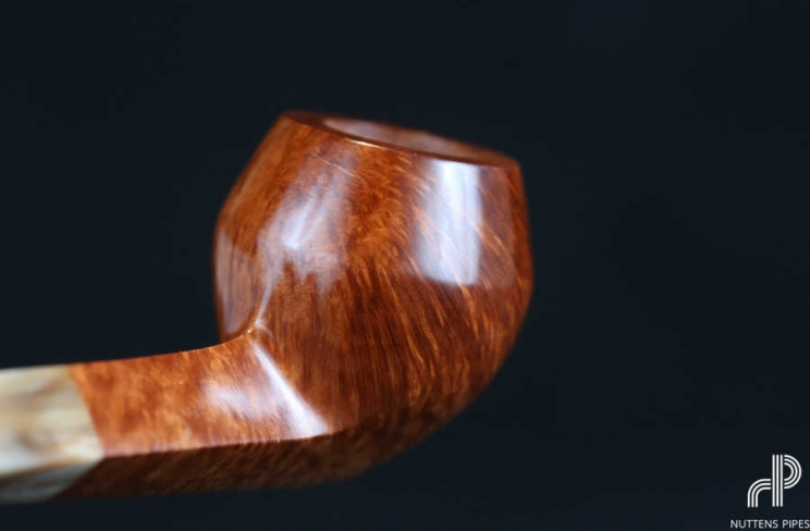 bulldog smooth horn grade 1