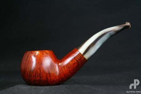 author smooth horn stem